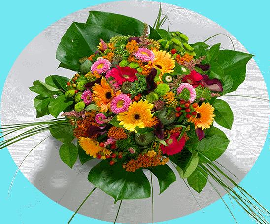 hvb-blomst.png